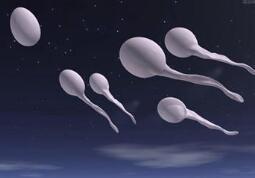 导致男人精子少的原因